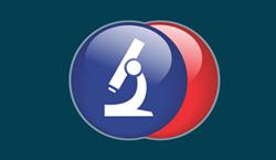 Access our Web App